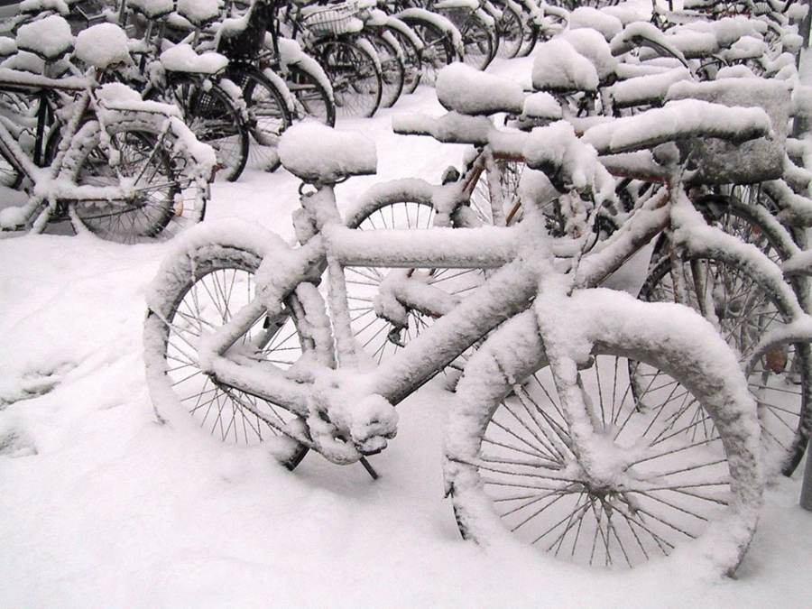 Watch out for tomorrow's blog – Winterise your bike